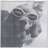 Dumb Punts