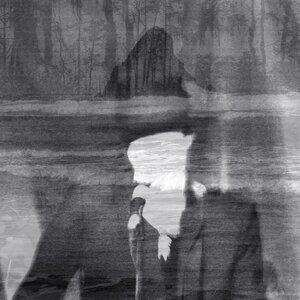 The Veils (帷幕樂團) 歌手頭像