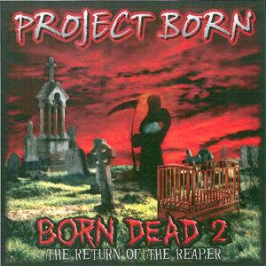 Project Born 歌手頭像