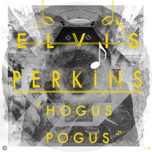 Elvis Perkins 歌手頭像