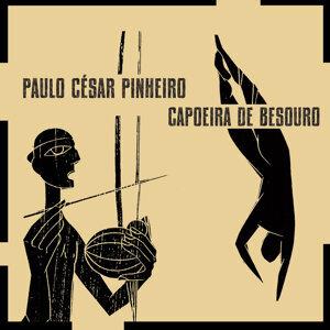 Paulo Cesar Pinheiro 歌手頭像