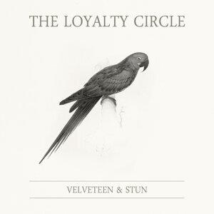 Velveteen and Stun 歌手頭像