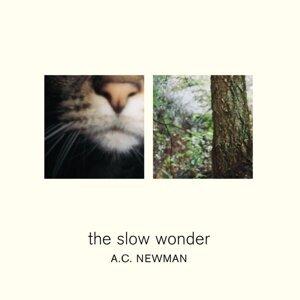 A.C. Newman 歌手頭像