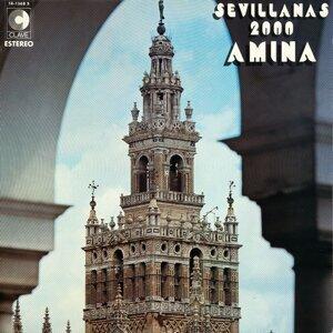 Amina 歌手頭像
