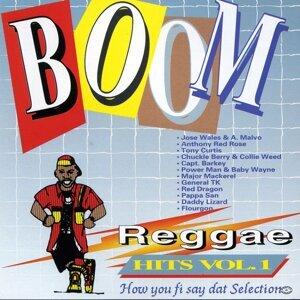 Boom Reggae Hits Vol. 1 歌手頭像