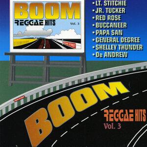 Boom Reggae Hits Vol. 3 アーティスト写真