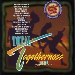 Total Togetherness Vol. 4 アーティスト写真