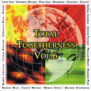 Total Togetherness Vol. 6 アーティスト写真