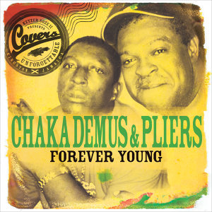 Chaka Demus & Pliers 歌手頭像