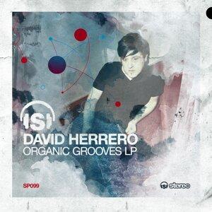 David Herrero 歌手頭像