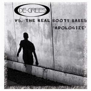 De-Grees vs. The Real Booty Babes アーティスト写真