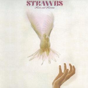 Strawbs 歌手頭像