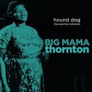 Big Mama Thornton 歌手頭像