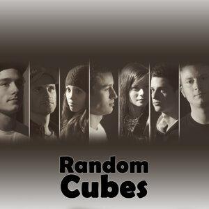 Random Cubes 歌手頭像