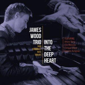 James Wood 歌手頭像