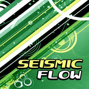 Seismic Flow 歌手頭像