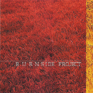 Burnside Project