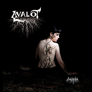 Avalot 歌手頭像