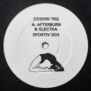 Cosmin TRG Artist photo