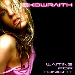 Ekowraith 歌手頭像