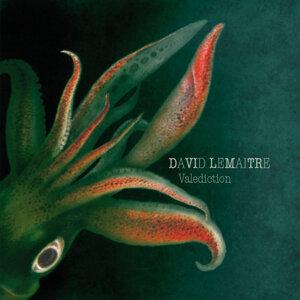 David Lemaitre 歌手頭像
