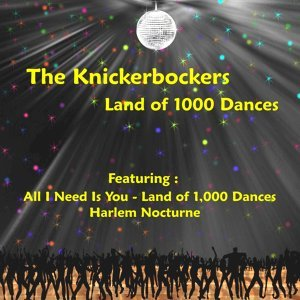The Knickerbockers 歌手頭像
