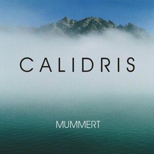 Holger Mummert 歌手頭像