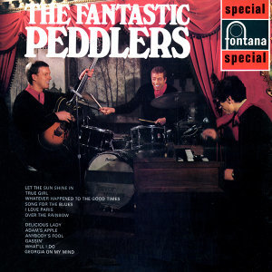 The Peddlers 歌手頭像
