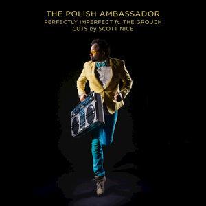 The Polish Ambassador Artist photo