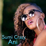 Sumi Crazy