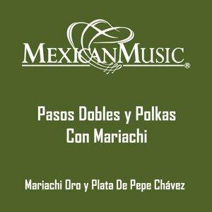 Mariachi Oro y Plata de Pepe Chavez 歌手頭像