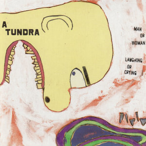 A Tundra