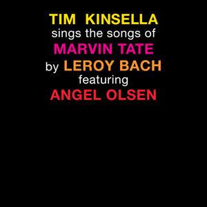 Tim Kinsella 歌手頭像