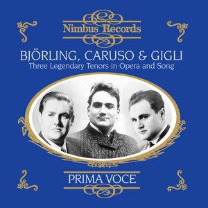 Beniamino Gigli, Enrico Caruso, Jussi Björling 歌手頭像
