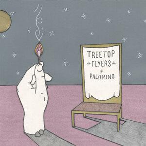 Treetop Flyers 歌手頭像