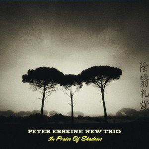 Peter Erskine New Trio
