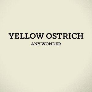 Yellow Ostrich 歌手頭像