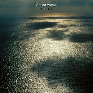Amina Alaoui 歌手頭像