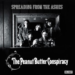 The Peanut Butter Conspiracy 歌手頭像