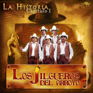 Los Jilgueros Del Arroyo 歌手頭像