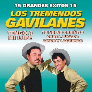 Los Tremendos Gavilanes 歌手頭像