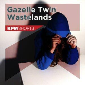 Gazelle Twin 歌手頭像