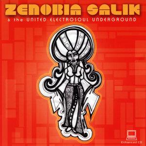 Zenobia Salik & the United ElectroSoul Underground アーティスト写真