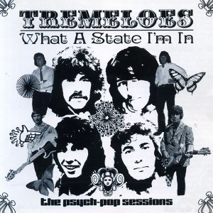 The Tremeloes 歌手頭像