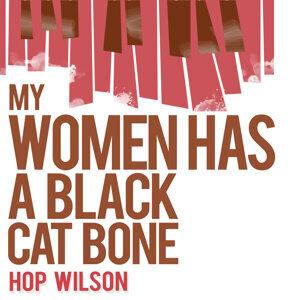Hop Wilson 歌手頭像