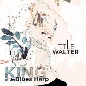 Little Walter 歌手頭像