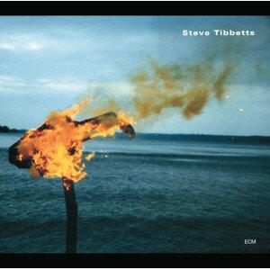 Steve Tibbetts 歌手頭像