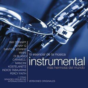 Lo Esencial De La Música Instrumental Más Hermosa Del Mundo 歌手頭像