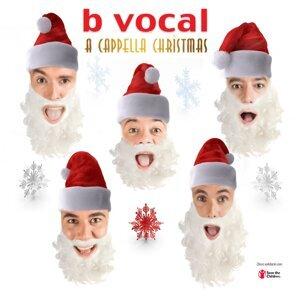 B Vocal 歌手頭像