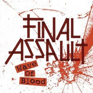 Final Assault アーティスト写真